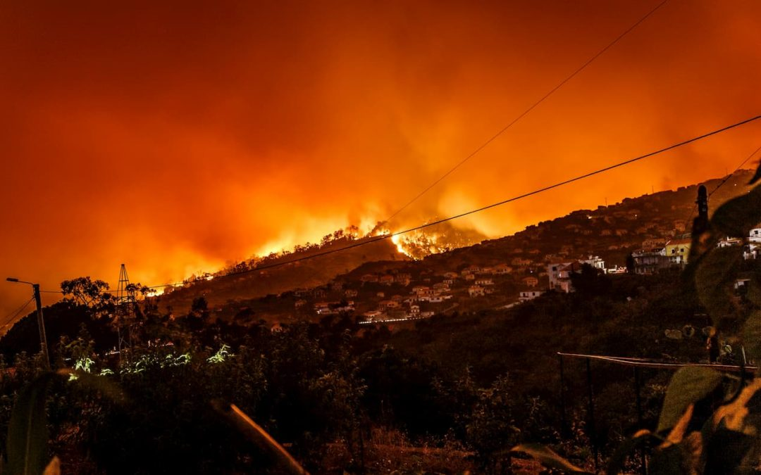 Protect Your Home from Wildfire