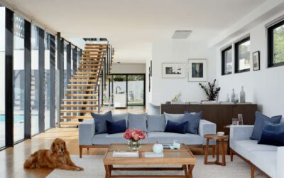 Should I Allow Pets in My Rental Property?